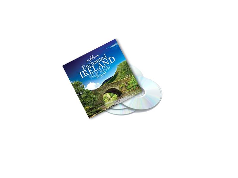 CD's - Global Journey