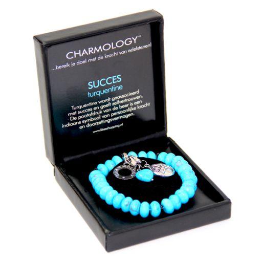 Charmology box Succes