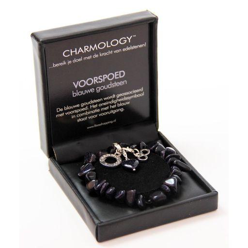 21126 - Charmology armband chunky - Voorspoed