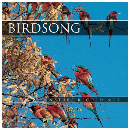 CD Birdsong