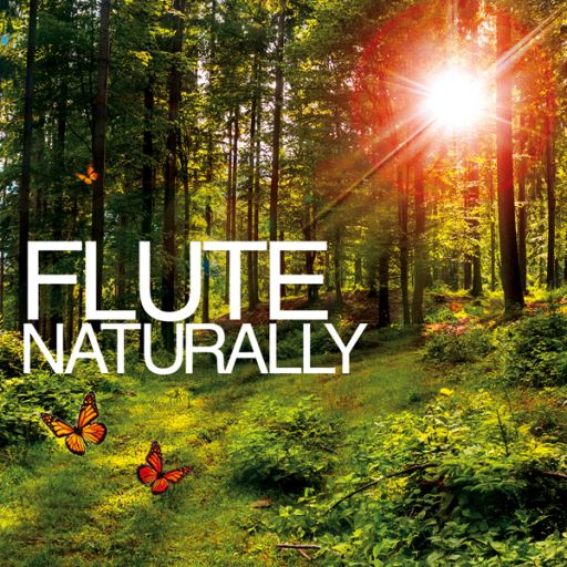 Cd -  Flute Naturally