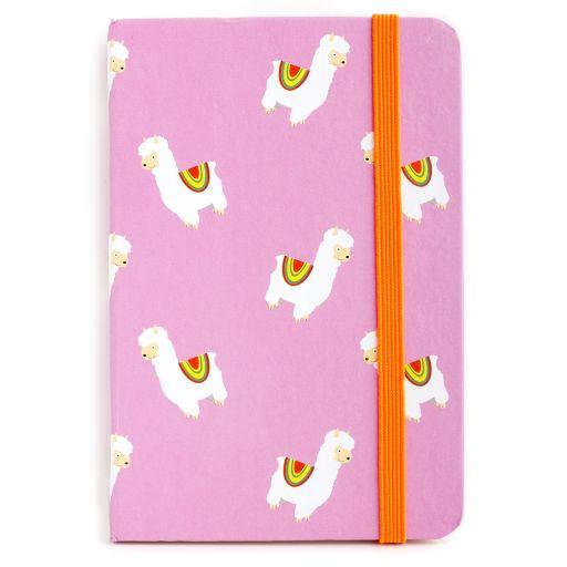 Notebook I saw this - Llama Print