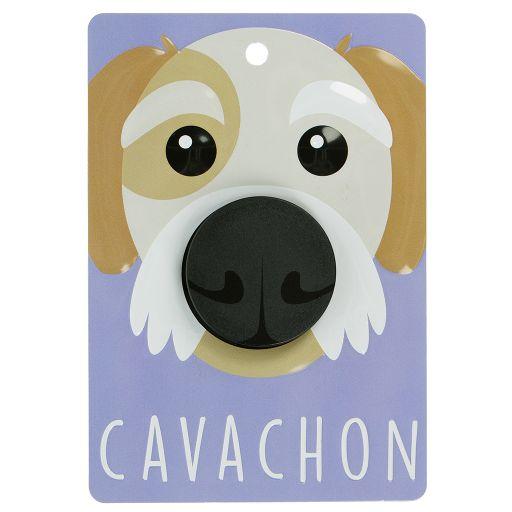 Hondenriemhanger (Pooch Pal) - DL51 - Cavachon