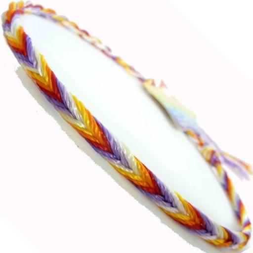 660040 - WB Friendship Bracelet - D10 Multi colour