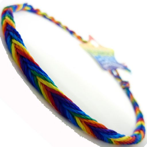 660034 - WB Friendship Bracelet - D4 Rainbow