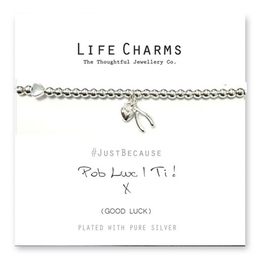 480222 - Life Charms - LC022BW - Just because - Wishes come True